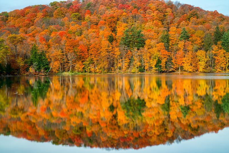 Vermont Fall 2019-7.jpg