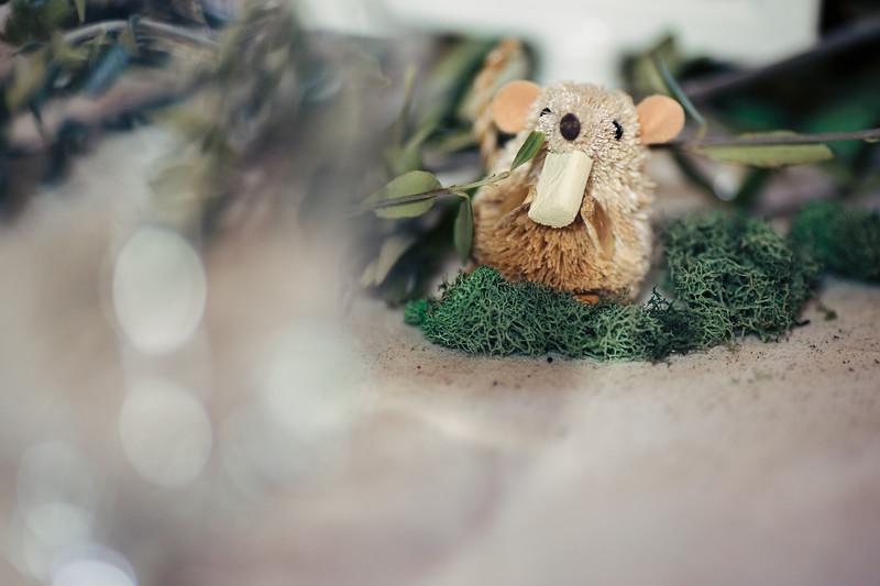 643-CK-Photo-Fors-Cornish-wedding.jpg
