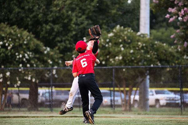 Cardinals Baseball Team  2020