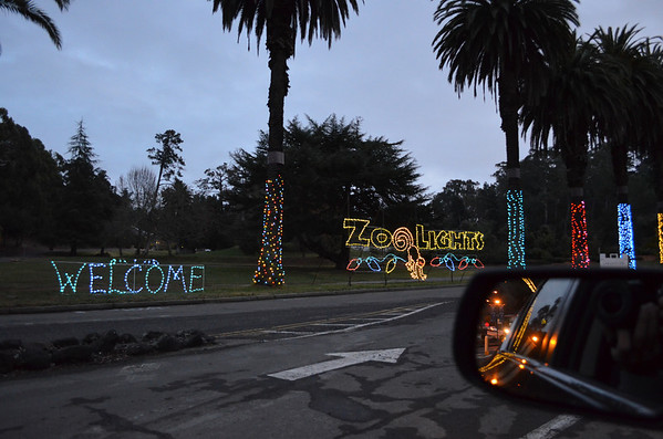 2011-12-30 Oakland Zoo Lights