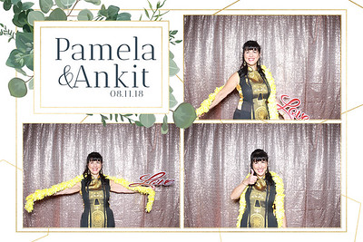 Pamela and Ankit Wedding