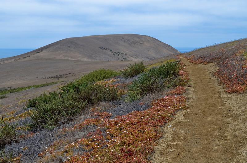 Signal Peak (635 ft.)