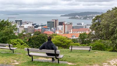 Wellington 2018