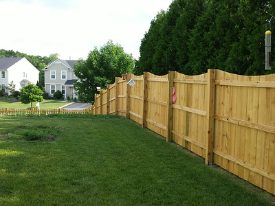 New Fence 2014