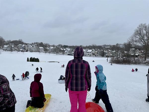 Winter Sled Festival