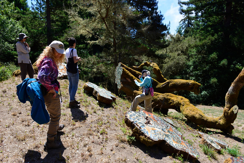 Tour of Djerassi Resident Artists sculptures