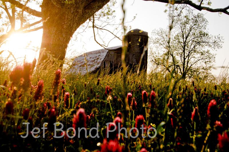 Sunset-barn-hortz.jpg