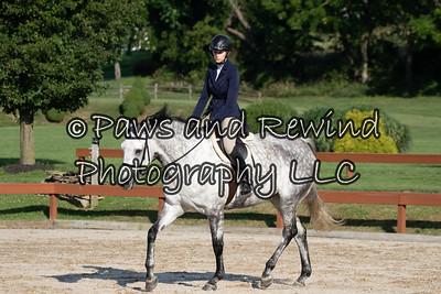 All Outreach Pleasure Horse or Pony