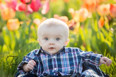 Lucas' First Year