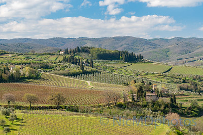 Tuscany Favorites