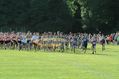 Boys JV Start - 2014 Budd Cicciarelli Adams Invitational