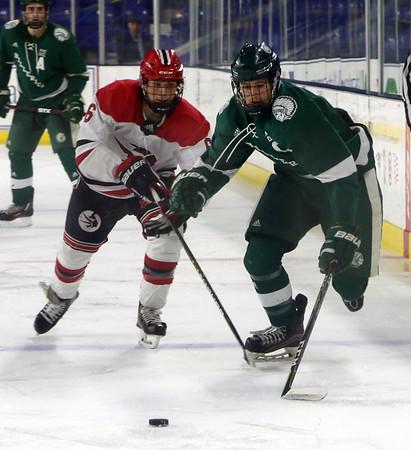 Billerica Winchester hockey 030719