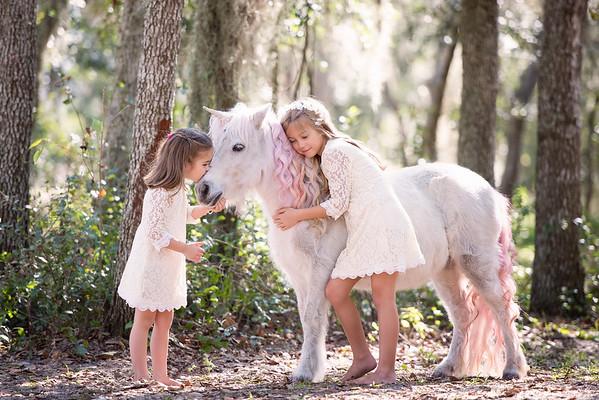 Unicorns Jan 2019 - Troje