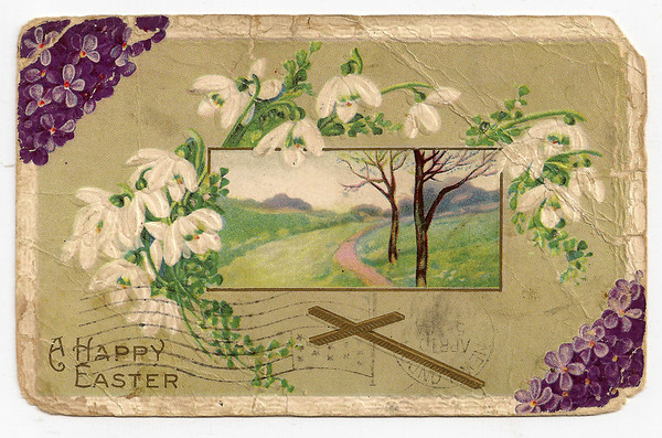 2014-05-17 Postcards To Nellie & Family