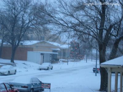 December 12, 2003 Snow