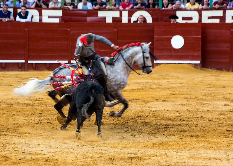 Bullfighting H33.jpg