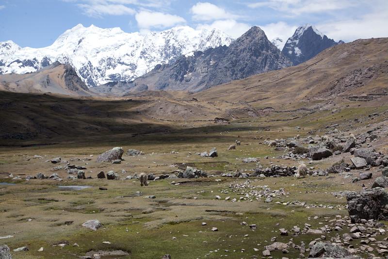 Peru_043.jpg