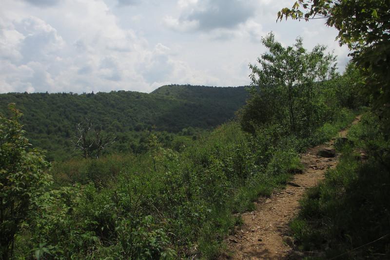 Graveyard Ridge Trail (5,200')