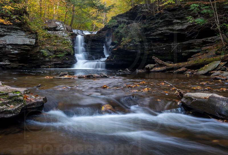 Murray Reynolds Falls-DSC_7813.jpg