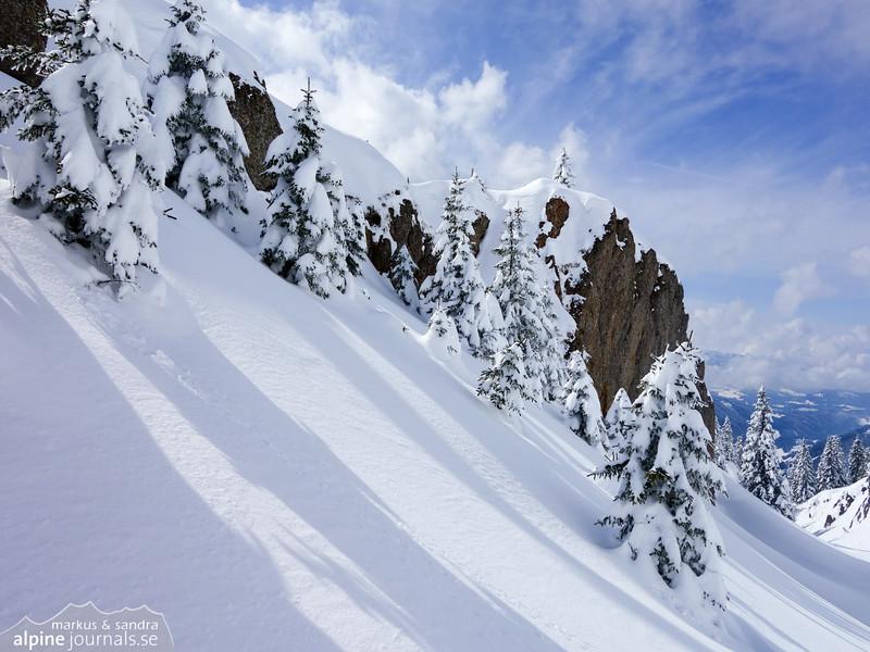 Snowy trees and cliffs near the Siplingerkopf summit