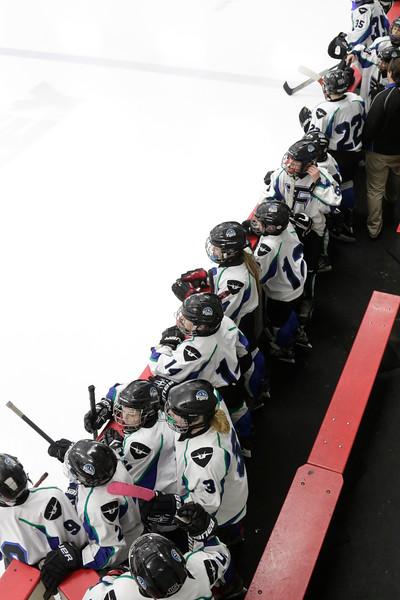 2016-Feb_12-Hockey-JPM1531.jpg