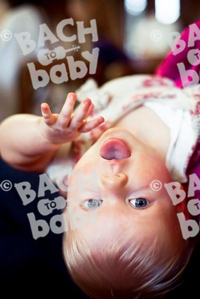 2014-01-15_Hampstead_Bach To Baby_Alejandro Tamagno-13.jpg