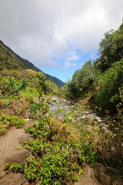 2010 Maui-236.jpg