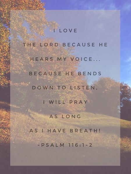 19_Psalm116-1-2_NJ_2016-11-6.jpg