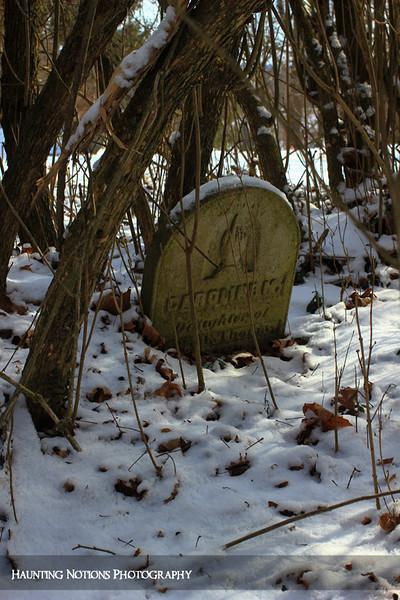 Tangled (Parmalee Cemetery, Parmalee MI)