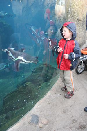 Zoo Christmas 09