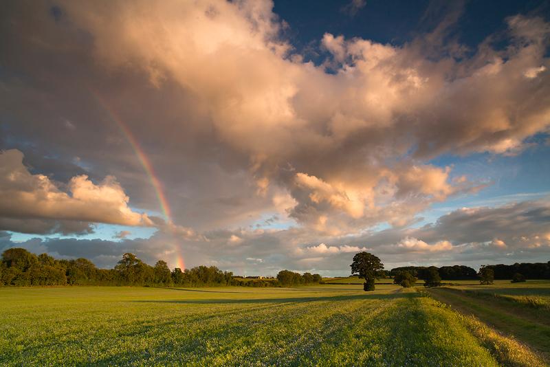 Warwickshire rainbow