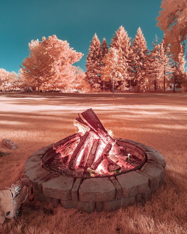 590nm infrared image with Kolari 5-stop filter