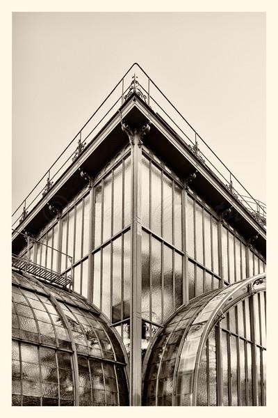 20150406_Serres-D'Auteuil_0011-BW.jpg