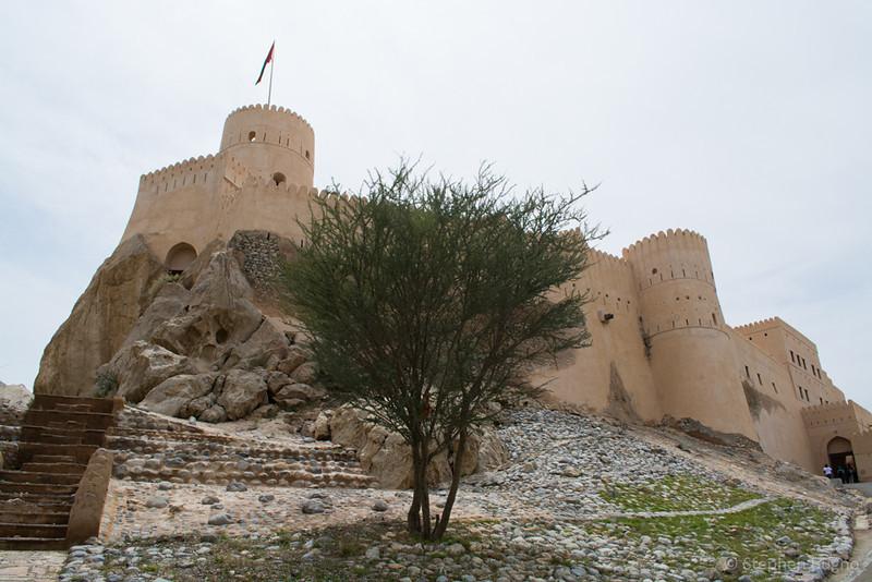 Oman Batinah-0189.jpg