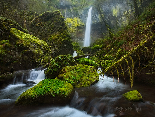 """Mossy Elowah""  Elowah Falls, Columbia Gorge, Oregon"