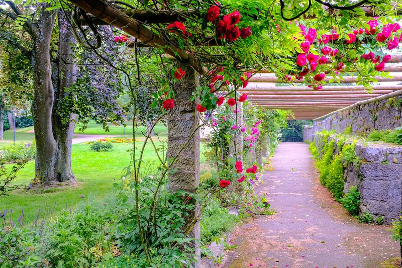 Rothenburg Garden-3x2-DSCF0266.jpg