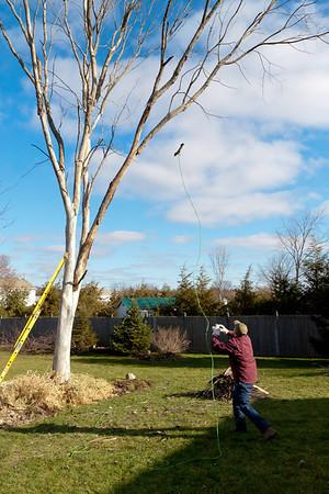 Bubs Tree Service