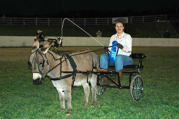 2008 Mini Mule Show