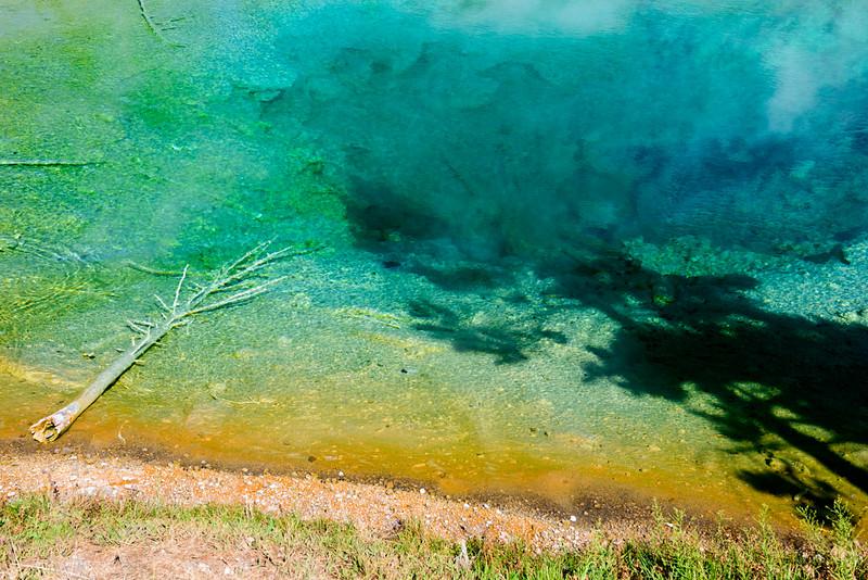 150720 - Yellowstone - 2176.jpg