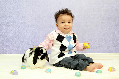 Gray Easter Mini