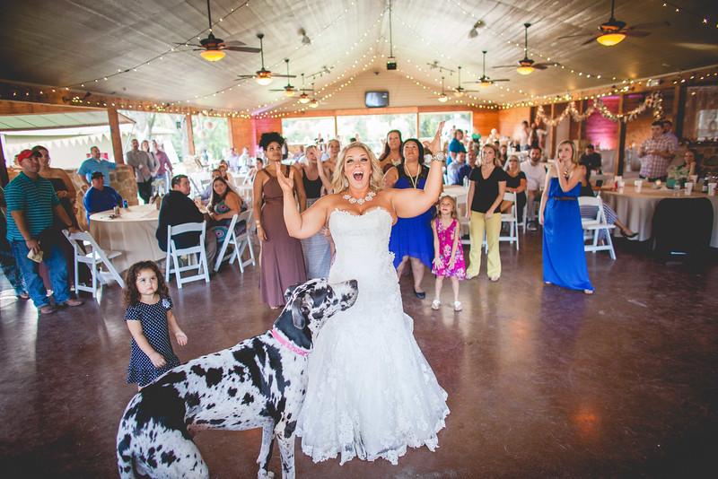 2014 09 14 Waddle Wedding - Reception-714.jpg