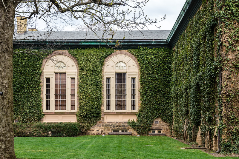 Princeton U_Ivy 4-15-2017-4555.jpg