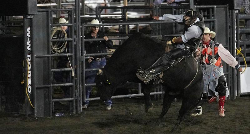 Enumclaw Rodeo 2019 - _15A5781.jpg