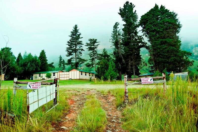 Campsite (5).jpg