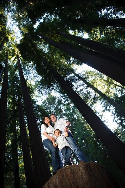 Theresa + Holland = Logan (Family Photography, Henry Cowell, Felton, California)