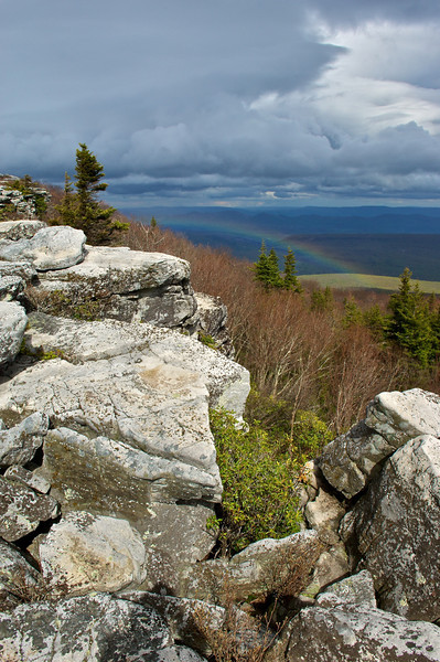 Dolly Sods Wilderness, Monongahela National Forest, West Virginia