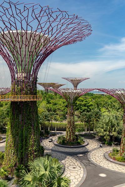 Singapore-19-065.jpg