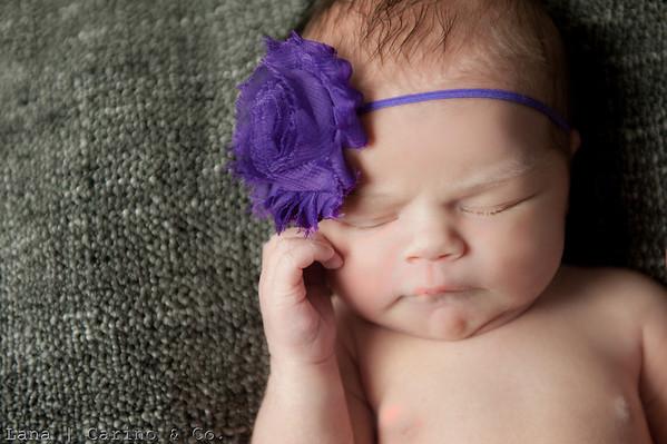 2013.02.18 Harper Pozinak Newborn