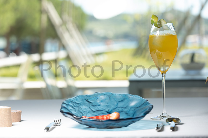 BIRDSONG Schweppes Cocktails 077.jpg