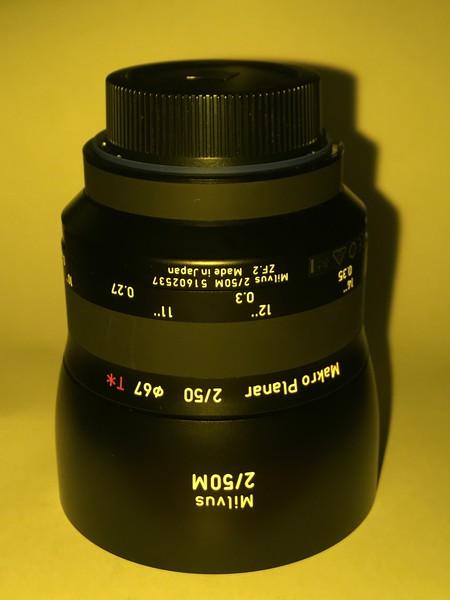 IMG_0445.MP4